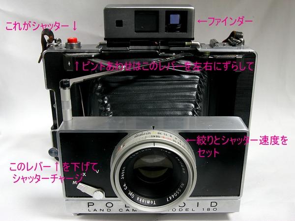 IMG_1604-2.JPG